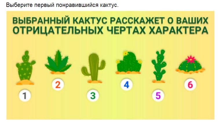 Ответы на психологический тест. Выберите кактус и узнайте свою тёмную сторону