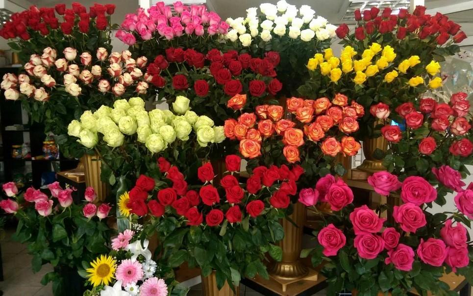 Выбираем цветы для девушки
