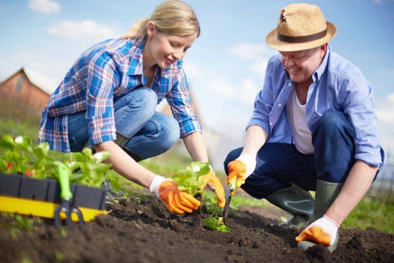 Что нужно для садовода